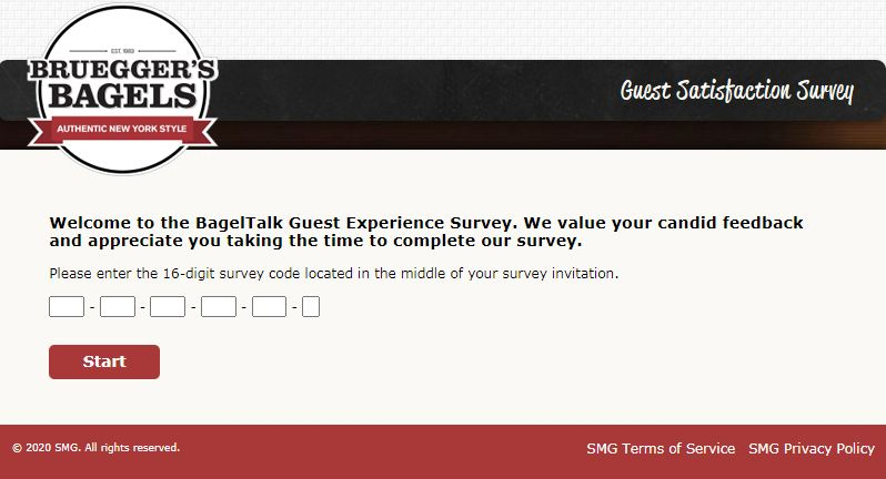 bruegger's bagels survey